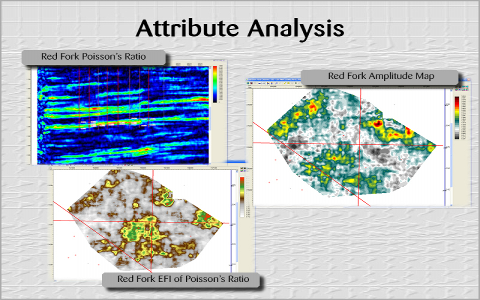 Attribute Analysis (14)