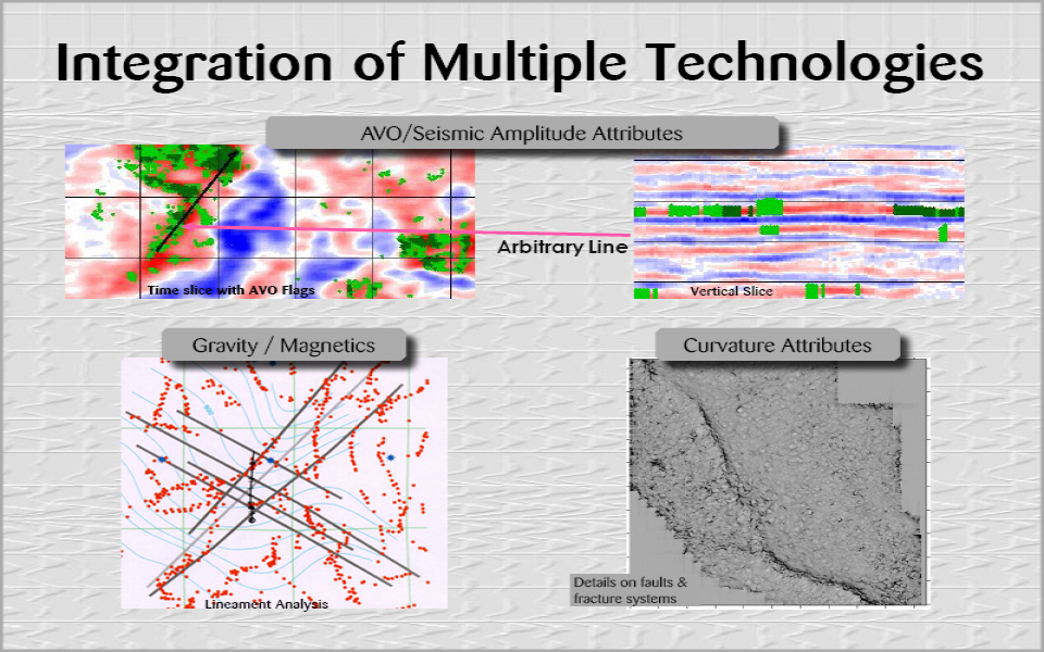 Integration of Multiple Technologies (16)