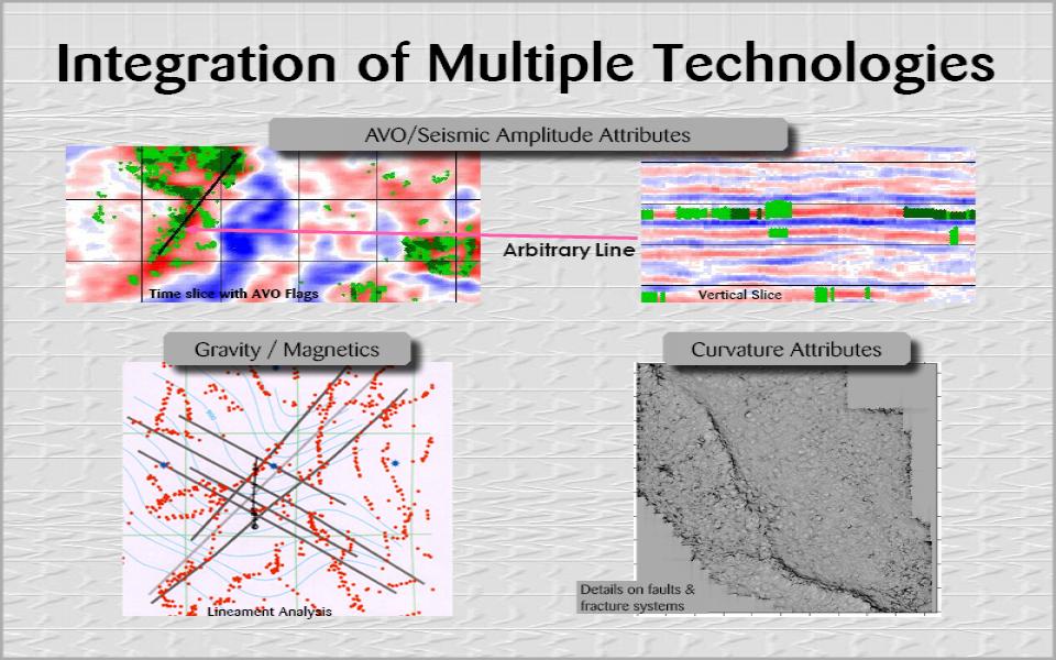 Integration of Multiple Technologies (16)